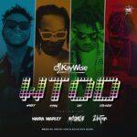 DJ Kaywise Ft. Mayorkun, Naira Marley, Zlatan – What Type Of Dance